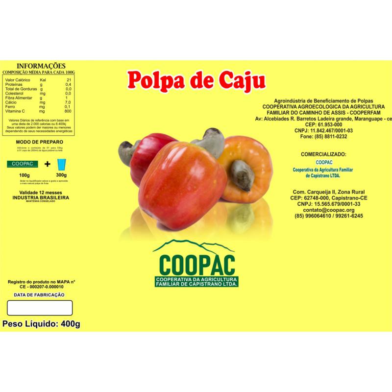 Polpa de Caju 400g
